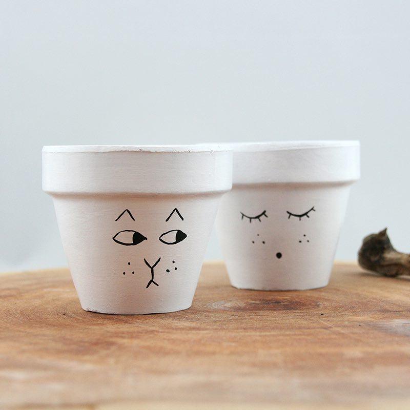 Kedi Suratlar Mini Toprak Saksı Seti Saksı Bitki